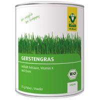Raab Vitalfood Gerstengras, bio, 75g